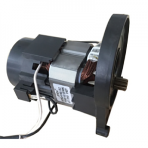Factory Selling Spray Pump Motor -