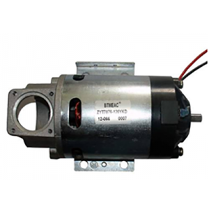 Short Lead Time for Dc Vacuum Cleaner Motor -